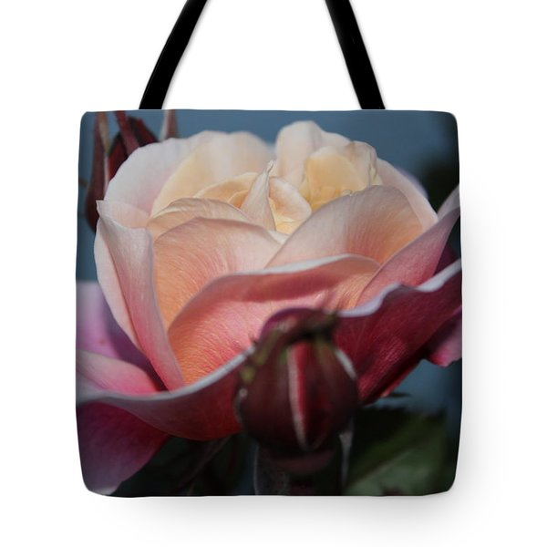Tote Bag featuring the photograph Distant Drum Rose Bloom by Patricia Hiltz