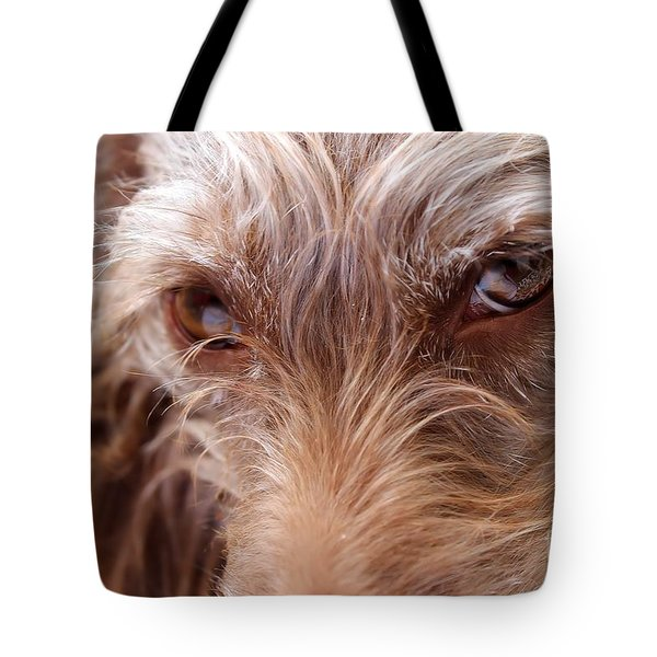 Dog Stare Tote Bag