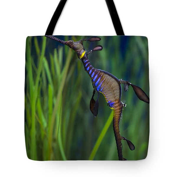 Dragon Seahorse Tote Bag by Diego Re