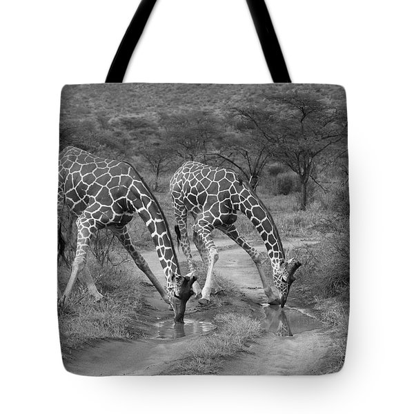 Drinking In Tandem Tote Bag by Michele Burgess