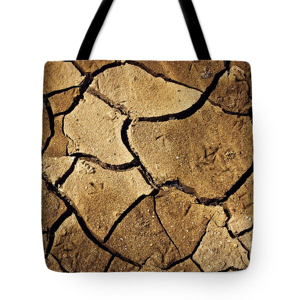 Dry Land Tote Bag by Carlos Caetano