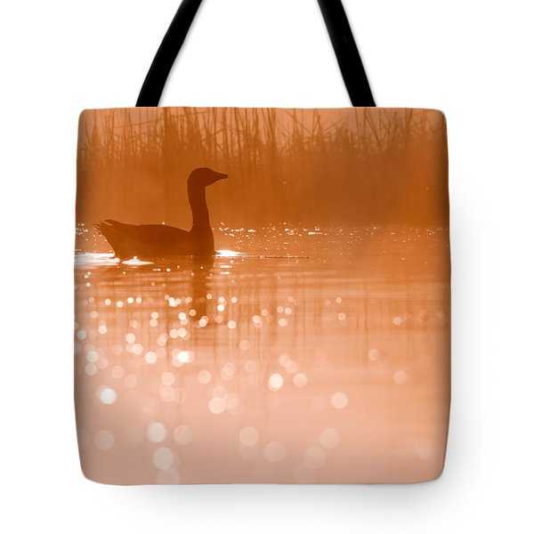 Early Morning Magic Tote Bag