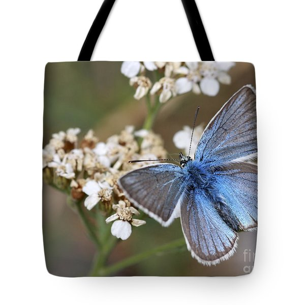 Eastern Baton Blue  Tote Bag by Amos Dor
