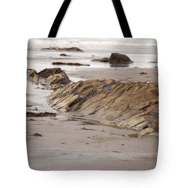 Emergence Tote Bag by Amanda Barcon