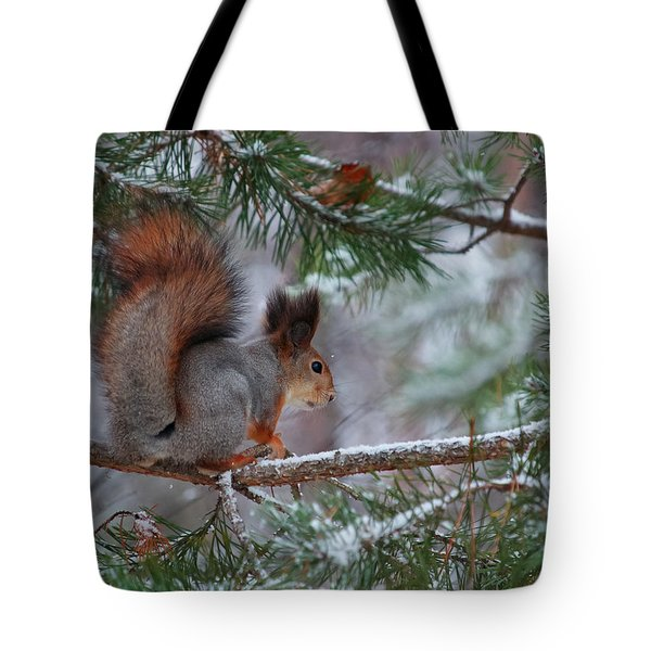 Eurasian Red Squirrel Tote Bag by Jouko Lehto