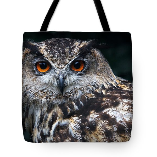 European Eagle Owl Tote Bag