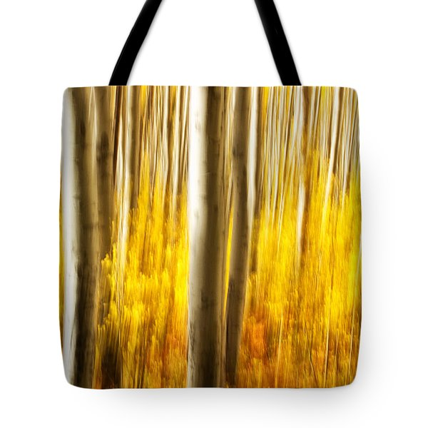 Tote Bag featuring the photograph Fall Abstract by Ronda Kimbrow