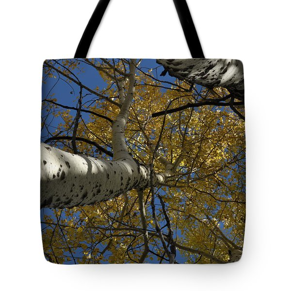 Fall Aspen Tote Bag