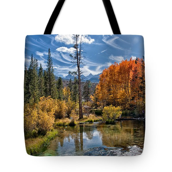 Fall At Bishop Creek Tote Bag by Cat Connor