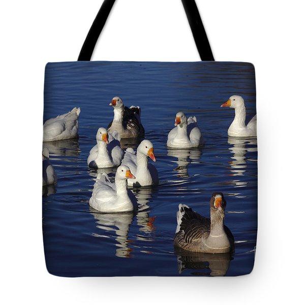 Family Goose Tote Bag