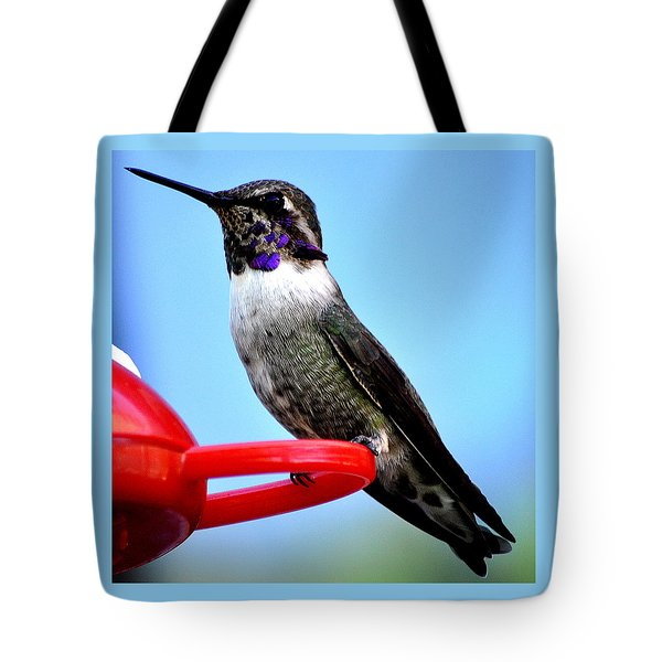 Tote Bag featuring the photograph Male Anna On Perch by Jay Milo