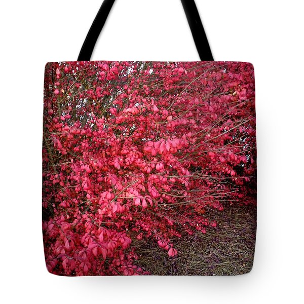 Tote Bag featuring the photograph Fire Bush by Pete Trenholm