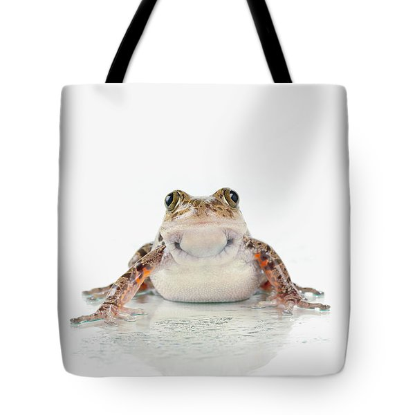 Fire-leg Walking Frog On White Tote Bag by Corey Hochachka