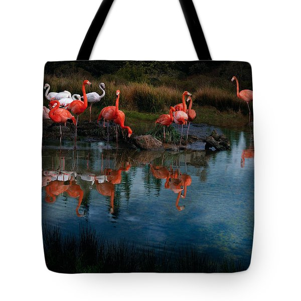 Flamingo Convention Tote Bag