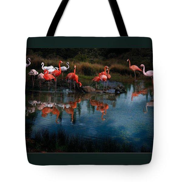 Flamingo Convention Tote Bag by Melinda Hughes-Berland