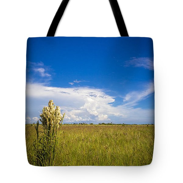 Florida Flat Land Tote Bag