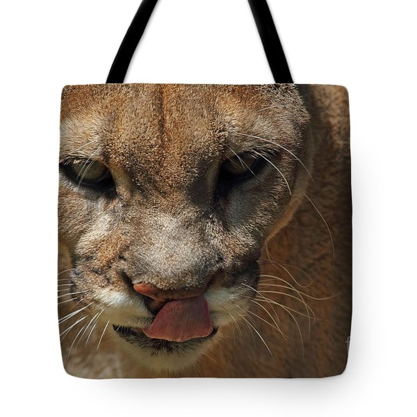 Tote Bag featuring the photograph Florida Panther by Meg Rousher