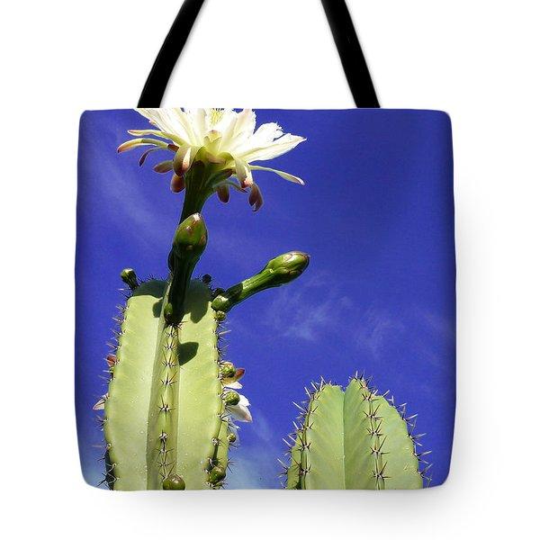 Flowering Cactus 2 Tote Bag