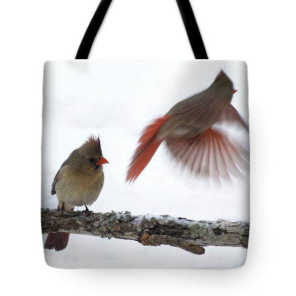 Fly Away Tote Bag by Bill Stephens