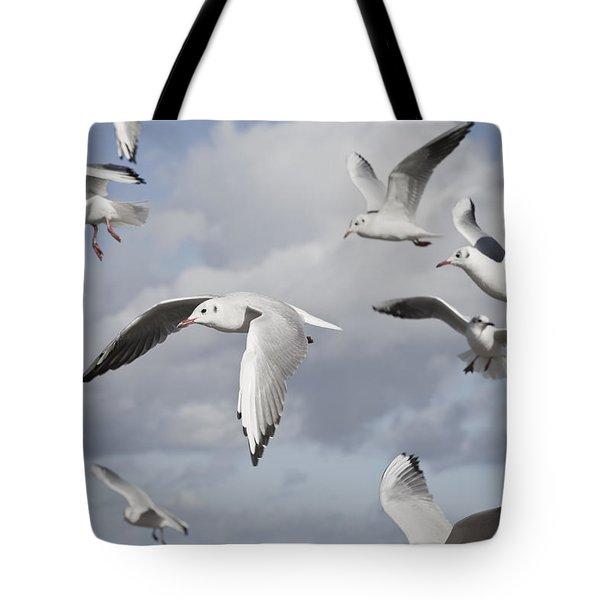 Flying Seagulls Tote Bag