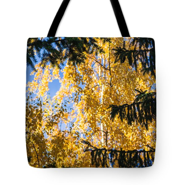 Forest Tale - Featured 3 Tote Bag