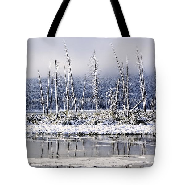 Fresh Snowfall And Bare Trees Tote Bag by Ken Gillespie