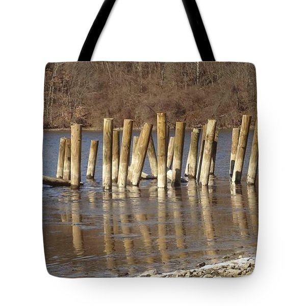 Frozen Pilings Tote Bag by Michael Porchik