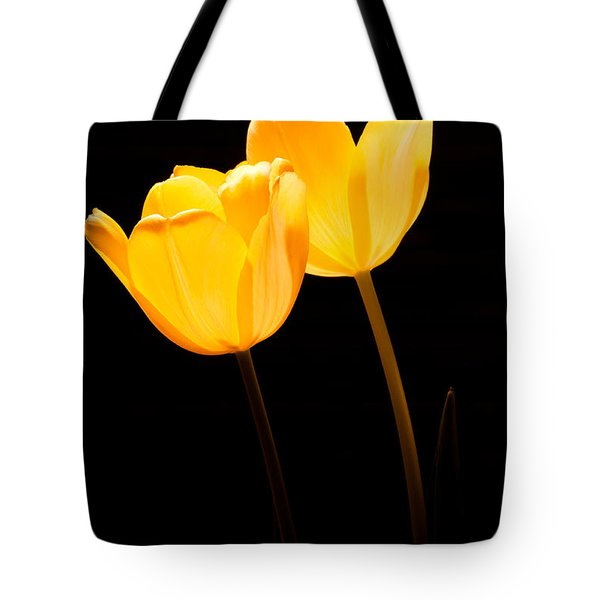 Glowing Tulips II Tote Bag