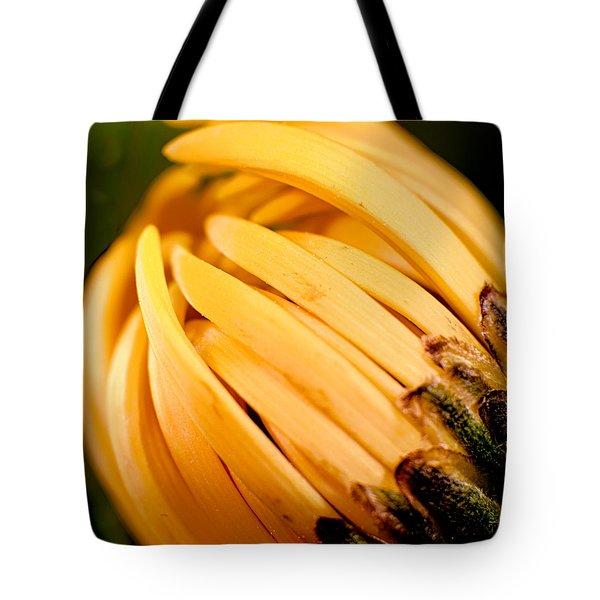 Going Bananas Tote Bag by Omaste Witkowski