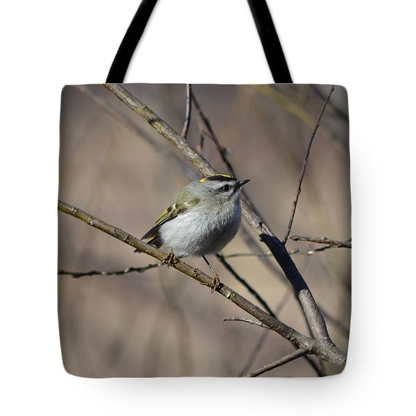 Golden-crowned Kinglet Tote Bag