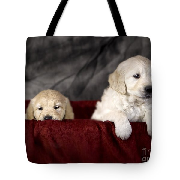 Golden Retriever Puppies Tote Bag by Angel  Tarantella