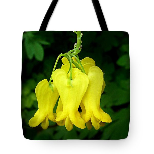Tote Bag featuring the photograph Golden Tears Vine by William Tanneberger