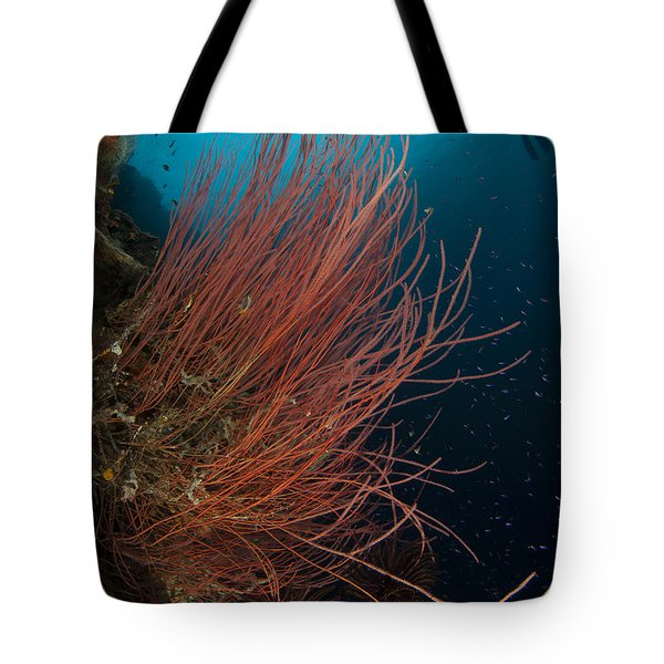 Grand Sea Whip With Diver Tote Bag by Steve Jones