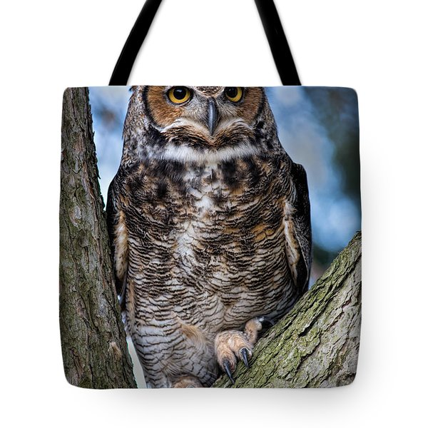 Great Horned Owl Tote Bag by Dale Kincaid