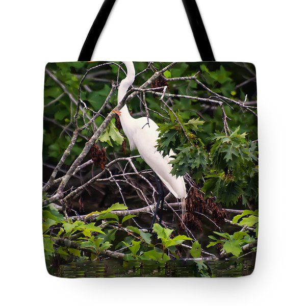 Great White Egret Tote Bag