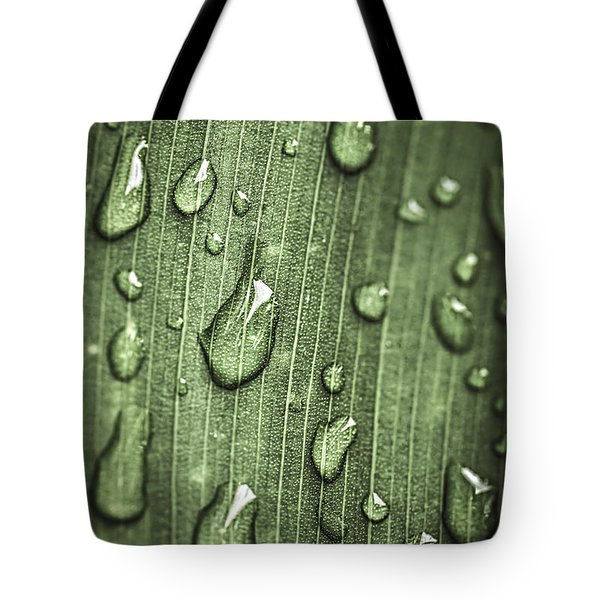 Green Leaf Abstract With Raindrops Tote Bag