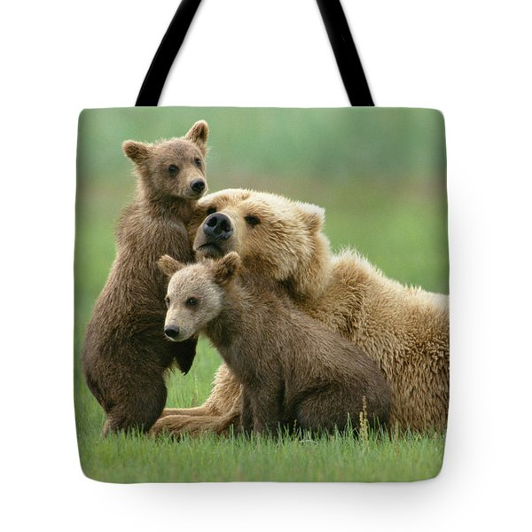 Grizzly Cubs Play With Mom Tote Bag