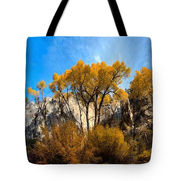 Tote Bag featuring the photograph Guardians by David Andersen
