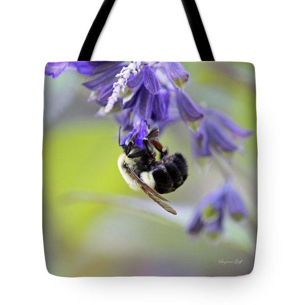Hanging In There Tote Bag by Suzanne Gaff