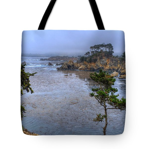 Harbor Seal Cove Tote Bag