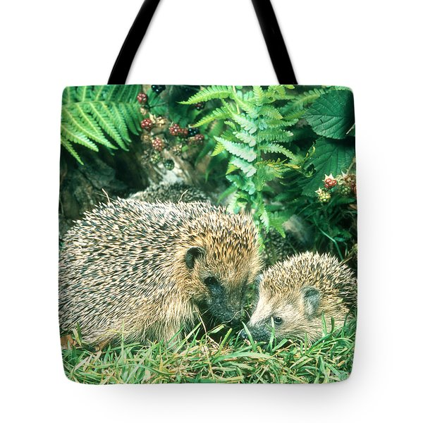 Hedgehog With Young Tote Bag by Hans Reinhard