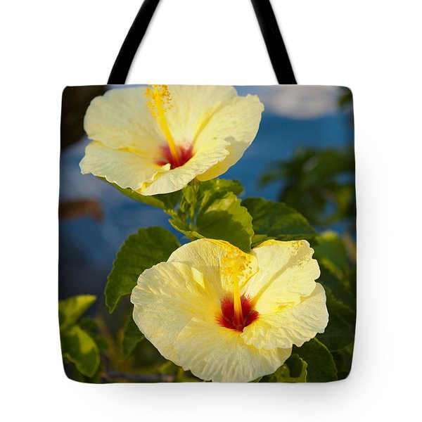 Tote Bag featuring the photograph Bright Yellow Hibiscus by Roselynne Broussard