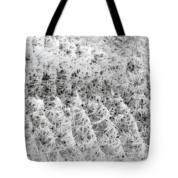 Hoarfrost 14 Tote Bag by Will Borden