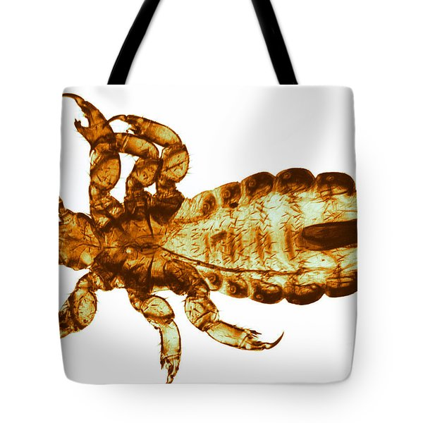 Human Louse, Lm Tote Bag by Eric V. Grave