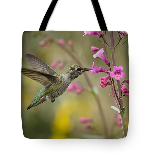 Hummingbird Heaven  Tote Bag