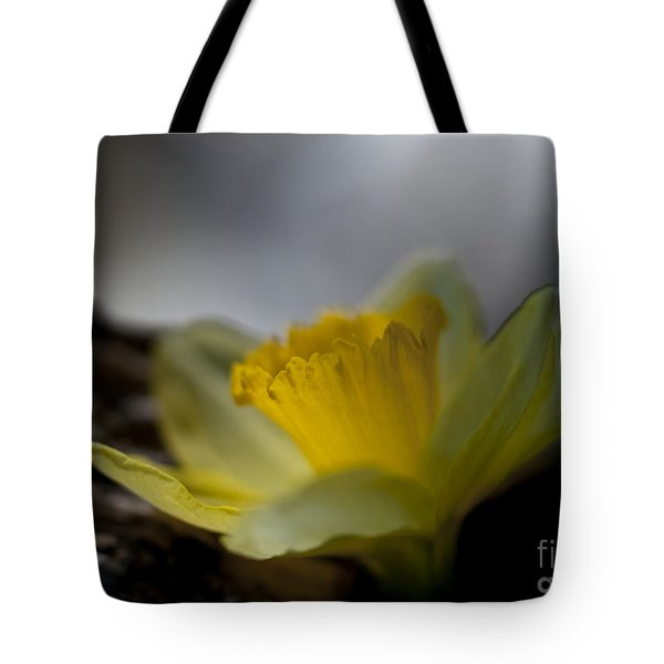 I Promise Tote Bag by Wilma  Birdwell