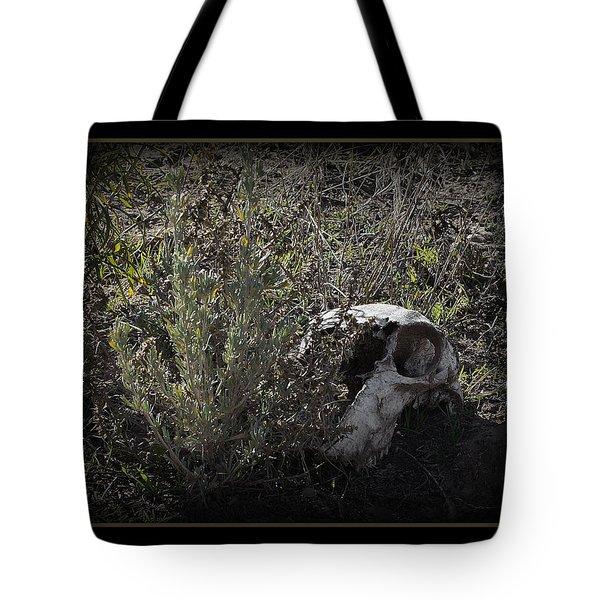 I See You Tote Bag by Ernie Echols