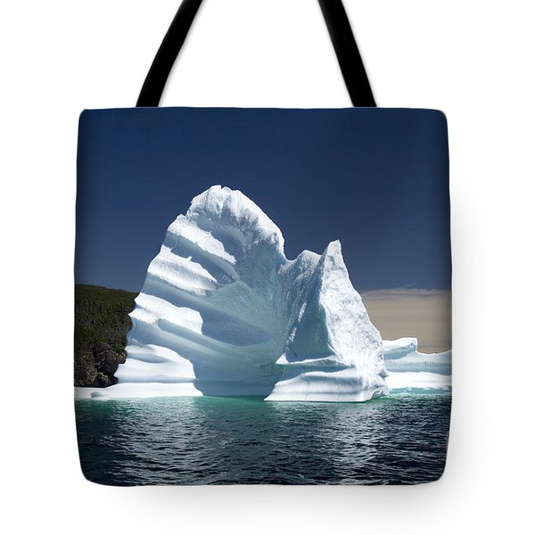 Tote Bag featuring the photograph Iceberg by Liz Leyden