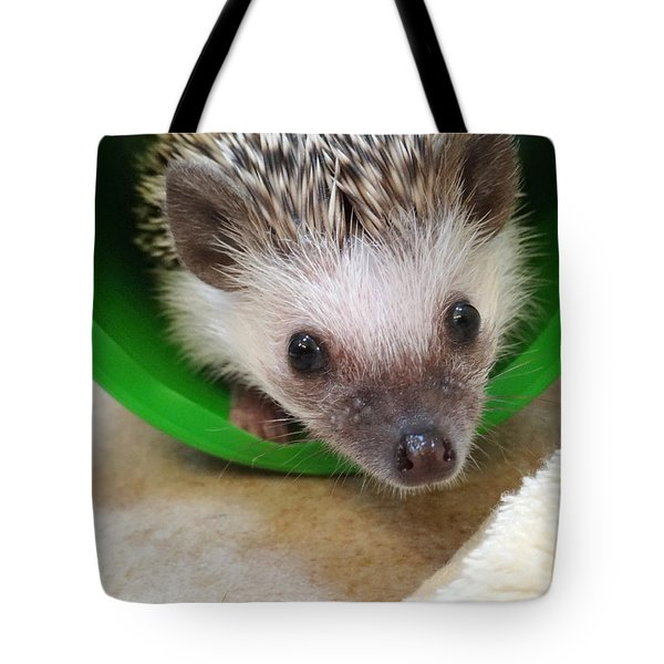 Inquisitive Tote Bag by Nick David