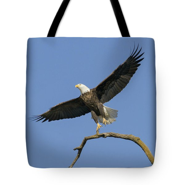 Tote Bag featuring the photograph King Of The Sky 3 by David Lester